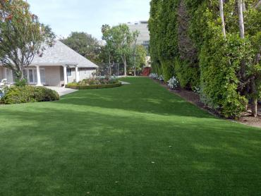 Artificial Grass Photos: Artificial Grass Installation Gardner, Florida Grass For Dogs, Front Yard Landscape Ideas
