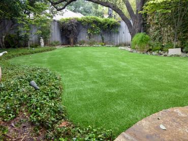 Artificial Grass Photos: Artificial Grass Installation Port Salerno, Florida Design Ideas, Backyard Designs