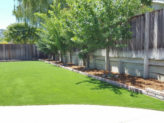 Artificial Grass Installation Wauchula, Florida Home And Garden, Commercial Landscape artificial grass