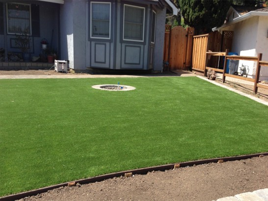 Artificial Grass Photos: Artificial Grass Lakewood Park, Florida Roof Top, Backyard Landscape Ideas