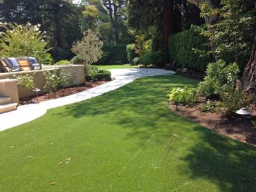 Artificial Grass Photos: Artificial Grass Royal Palm Beach, Florida Roof Top, Backyard Landscaping