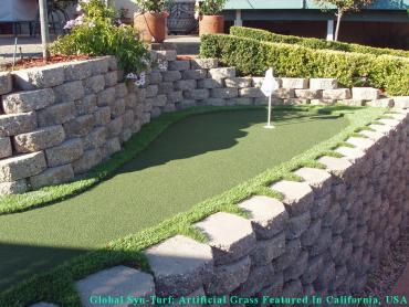 Artificial Lawn North Bay Village, Florida Outdoor Putting Green, Backyard Design artificial grass