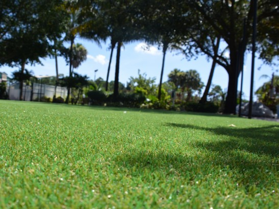 Artificial Grass Photos: Artificial Lawn Pineland, Florida Backyard Playground, Parks