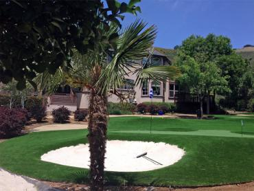 Artificial Grass Photos: Artificial Turf Cost Golden Beach, Florida Lawn And Landscape, Front Yard Ideas