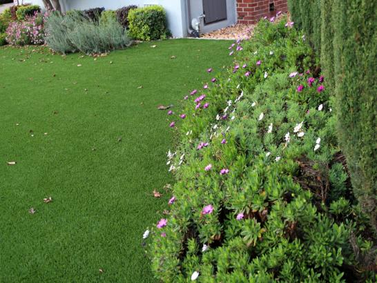 Artificial turf palm springs north florida diy putting for Cost to landscape front yard