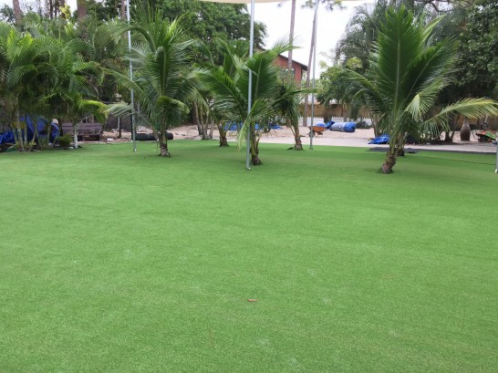 Artificial Grass Photos: Artificial Turf Installation Gardner, Florida Garden Ideas, Commercial Landscape