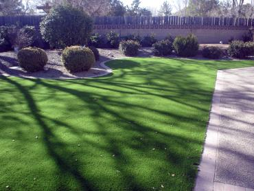 Artificial Grass Photos: Artificial Turf Installation Palm City, Florida Design Ideas, Front Yard Landscape Ideas