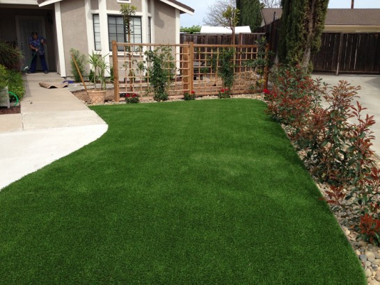Artificial Grass Photos: Artificial Turf Lake Placid, Florida Landscaping Business, Front Yard Landscaping