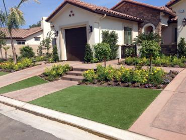 Artificial Grass Photos: Artificial Turf Wedgefield, Florida Landscaping, Front Yard Design