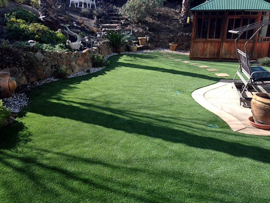 Artificial Grass Photos: Best Artificial Grass Jensen Beach, Florida Lawn And Landscape, Backyard Garden Ideas