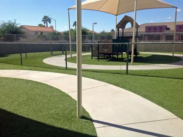 Artificial Grass Photos: Best Artificial Grass Wauchula, Florida Lawn And Landscape, Commercial Landscape