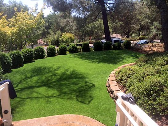 Artificial Grass Photos: Fake Grass Carpet Miami Lakes, Florida Landscape Ideas, Backyards