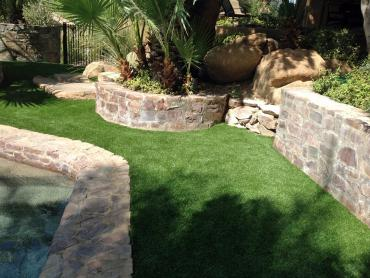Artificial Grass Photos: Fake Grass Combee Settlement, Florida Artificial Turf For Dogs, Backyard Landscaping Ideas
