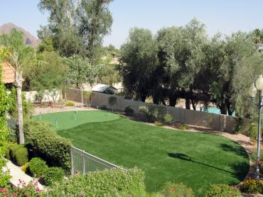 Artificial Grass Photos: Fake Grass Tequesta, Florida Landscape Ideas, Backyard Ideas
