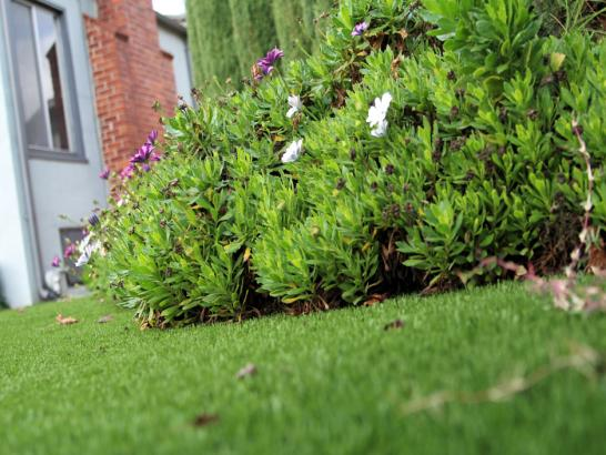Artificial Grass Photos: Fake Lawn Hillsboro Pines, Florida Lawn And Garden, Front Yard Landscaping