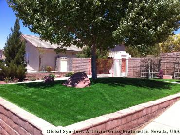 Artificial Grass Photos: Fake Lawn Miami Springs, Florida Design Ideas, Landscaping Ideas For Front Yard