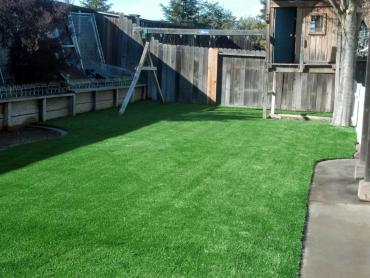 Artificial Grass Photos: Fake Turf Desoto Lakes, Florida Landscape Rock, Backyard