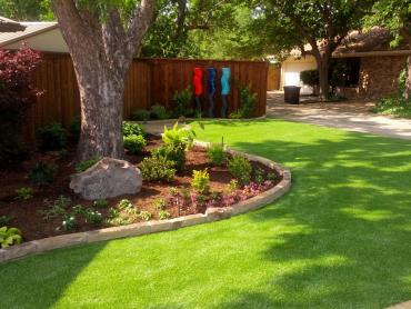 Artificial Grass Photos: Fake Turf Estero, Florida Landscaping, Backyard Makeover