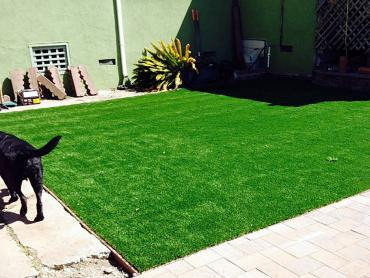 Artificial Grass Photos: Fake Turf Lake Sarasota, Florida Rooftop, Backyard Design
