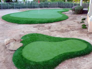 Artificial Grass Photos: Fake Turf Vero Beach South, Florida Landscape Photos, Front Yard Landscape Ideas