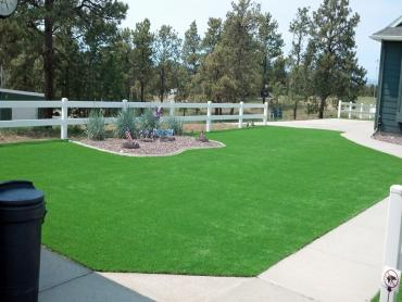 Artificial Grass Photos: Faux Grass Hallandale Beach, Florida Lawns, Front Yard Design