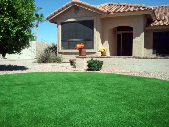 Artificial Grass Photos: Faux Grass North Miami, Florida Landscaping, Front Yard Landscaping Ideas