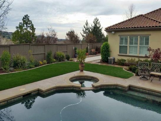Artificial Grass Photos: Grass Carpet Layton, Florida Lawn And Garden, Above Ground Swimming Pool