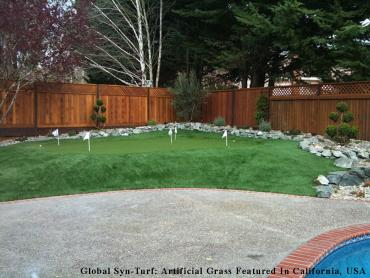 Artificial Grass Photos: Grass Carpet Pinewood, Florida Indoor Putting Green, Backyard Design