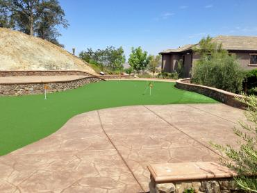 Artificial Grass Photos: Grass Carpet Plant City, Florida Putting Greens, Backyard Landscaping