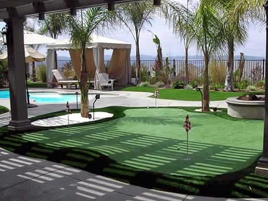 Grass Carpet Royal Palm Beach Florida Landscape Design Swimming Pools