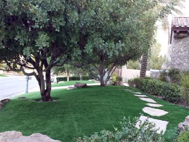 Artificial Grass Photos: Grass Installation Olga, Florida Backyard Playground, Small Front Yard Landscaping
