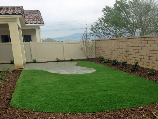 Artificial Grass Photos: Grass Installation Olga, Florida Roof Top, Backyard Landscaping