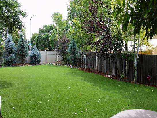 Artificial Grass Photos: Grass Turf Juno Ridge, Florida Garden Ideas, Backyards