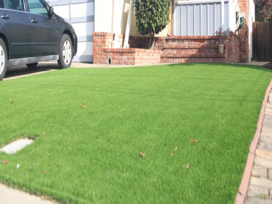 Artificial Grass Photos: Grass Turf South Palm Beach, Florida Landscape Design, Front Yard Landscaping Ideas
