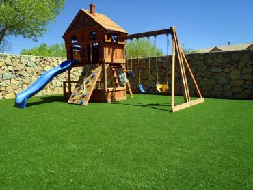 Artificial Grass Photos: Green Lawn Bokeelia, Florida Backyard Playground, Backyards
