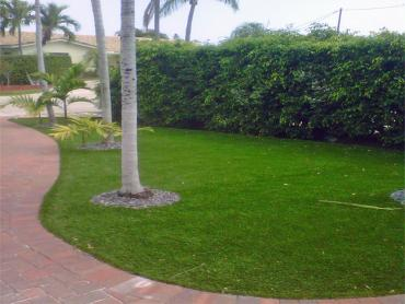 Artificial Grass Photos: Green Lawn Key Colony Beach, Florida Lawns, Small Front Yard Landscaping