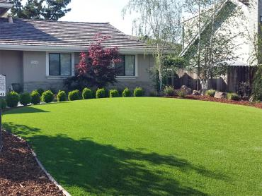 Artificial Grass Photos: Green Lawn Palm Springs, Florida Design Ideas, Front Yard Design