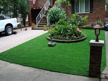 Artificial Grass Photos: How To Install Artificial Grass Palmona Park, Florida, Front Yard Landscaping