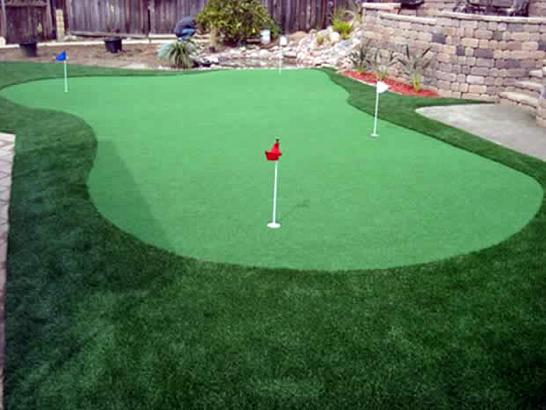 Artificial Grass Photos: How To Install Artificial Grass West Palm Beach, Florida Lawn And Landscape, Small Backyard Ideas