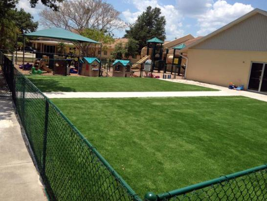 Artificial Grass Photos: Lawn Services Villages of Oriole, Florida City Landscape, Commercial Landscape