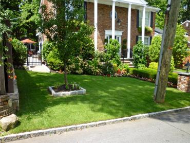 Artificial Grass Photos: Outdoor Carpet Cypress Quarters, Florida Design Ideas, Landscaping Ideas For Front Yard