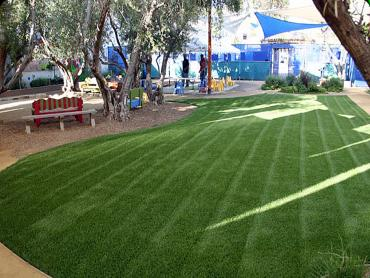 Artificial Grass Photos: Outdoor Carpet Fruitville, Florida Lawn And Garden, Commercial Landscape