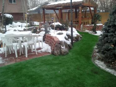 Artificial Grass Photos: Outdoor Carpet Pinecrest, Florida Home And Garden, Backyard Designs
