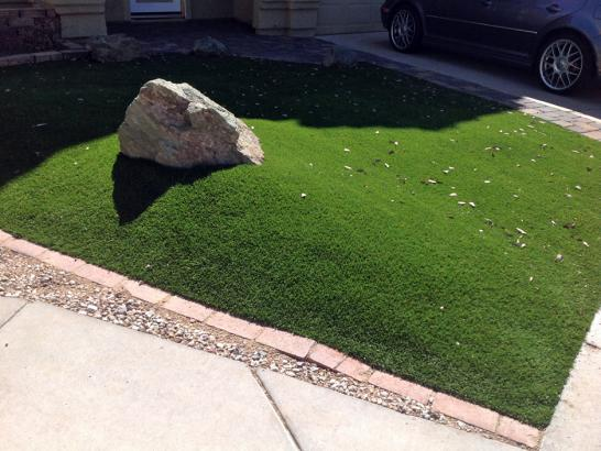 Artificial Grass Photos: Outdoor Carpet Williamsburg, Florida Design Ideas