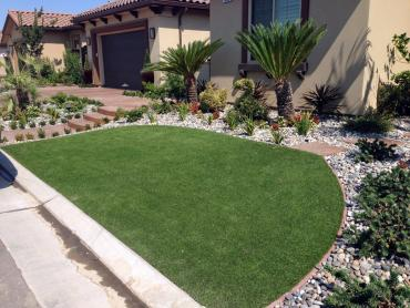 Artificial Grass Photos: Plastic Grass Seminole Manor, Florida Backyard Deck Ideas, Small Front Yard Landscaping