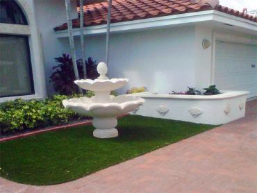 Synthetic Grass Cost Goulds, Florida Landscape Ideas, Front Yard artificial grass