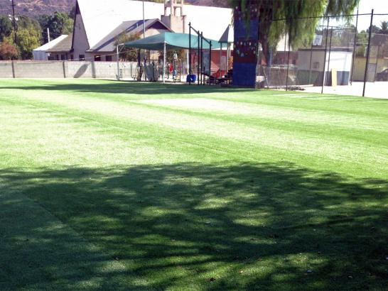 Artificial Grass Photos: Synthetic Grass Cost Kendall, Florida Stadium, Recreational Areas