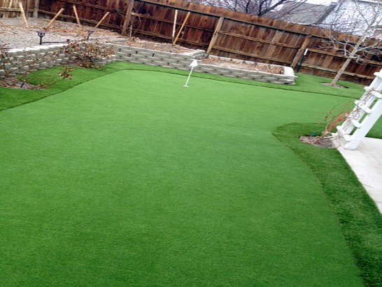 Artificial Grass Photos: Synthetic Grass Cost LaBelle, Florida Lawns, Small Backyard Ideas