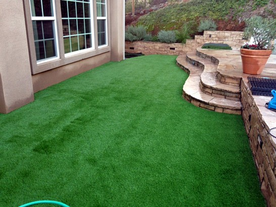 Artificial Grass Photos: Synthetic Grass Cost Lehigh Acres, Florida Garden Ideas, Beautiful Backyards