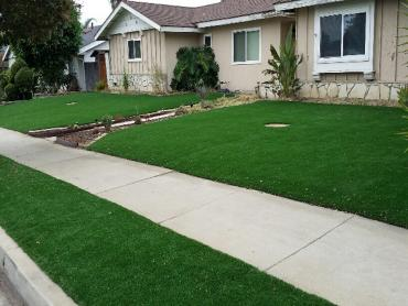 Artificial Grass Photos: Synthetic Grass Cost Poinciana, Florida Gardeners, Front Yard Ideas